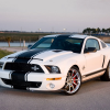 Фото Shelby Ford Mustang GT500 Super Snake
