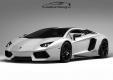 Фото Lamborghini Aventador LP760-2 Oakley Design 2011