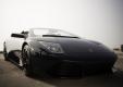 Фото Lamborghini Murcielago LP640 Roadster Versace 2007
