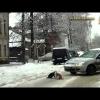 Разборка между двумя котами на дороге