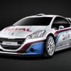 Фото Peugeot 208 type r5 2013