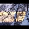 Видео тест драйв LIFAN Х60 от АвтоВести