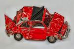 Гербарий из автомобилей – новый вид искусства