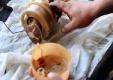 Как снять и отремонтировать топливный насос на Рено Логан