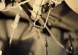 Регулятор задних тормозных усилий на Рено Логан — ремонт
