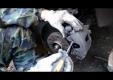 Руководство по замене передних тормозных колодок на Опель Астра