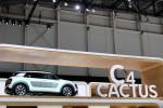 Citroen C4-Cactus Aventure 2014 Фото 22